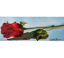 Red Rosebud Photographic Print