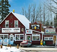 Nagley's Store by Sally Winter