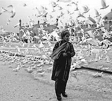 Young  and  white pigeon ,  Afghanistan by yoshiaki nagashima