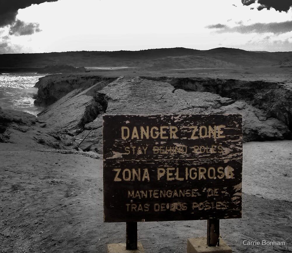 Danger Zone by Carrie Bonham