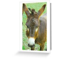 Eeyore The Donkey Greeting Card