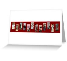 Reptile Strip Red Collage Greeting Card