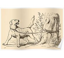 Five Mice in a Mouse Trap Laura Elisabeth Howe Richards and Kate Greenaway 1881 0165 Dog Tied to a Tree Poster