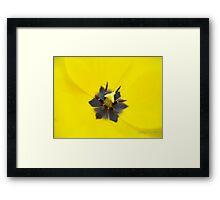 Tulip Macro Framed Print