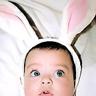 Funny Bunny by Mia-Bella-Photo