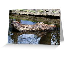 Water Logged Greeting Card