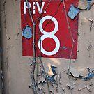 PIV 8 by Peter Baglia