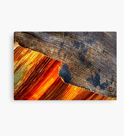 Two forces. Canvas Print
