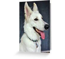 White German Shepherd Dog Portrait Greeting Card