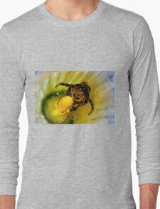 OOOOH! Honey Honey!! Long Sleeve T-Shirt