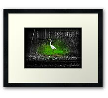 Surving the Cement Framed Print