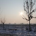 Winter in my neighbourhood by velkovski