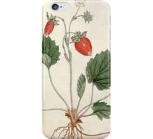 The Botanical magazine, or, Flower garden displayed by William Curtis V1 V2 1787 1789 0138 Fragaria Monophylla, One Leaved Strawberry, Strawberry of Versailles iPhone Case/Skin
