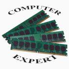 Computer expert by Wildcat123