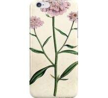 The Botanical magazine, or, Flower garden displayed by William Curtis V3 V4 1790 1791 0070 Iberis Umbellata, Purple Candy Tuft iPhone Case/Skin
