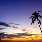 Golden Sunset by velkovski