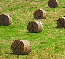 Bales of Hay, Dorset UK by lynn carter