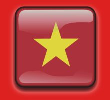 Vietnamese Flag, Vietnam Icon by tshirtdesign