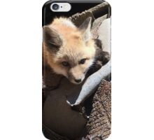 Fox in the Henhouse iPhone Case/Skin