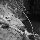 Woolshed Falls by Fleur Stelling