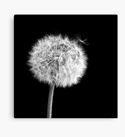 Candidate for departure Canvas Print