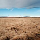 Iceland  by Francesco Carucci