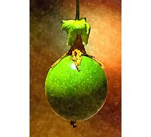 Passion fruit Photographic Print
