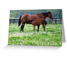 Naps over......Lunch time..... Greeting Card