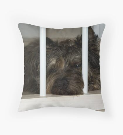 I'm boring, please let me go out... Throw Pillow