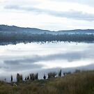 Huon Valley by Paul Campbell  Photography