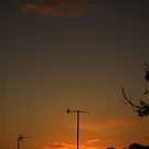 Sunrise by Nicola Hunter