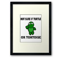 Confused Turtle Framed Print