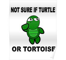 Confused Turtle Poster