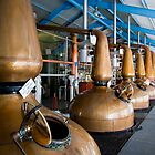 Whisky distillery stills by Jaime Pharr