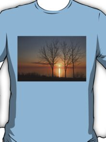 Three Trees and the Sun T-Shirt