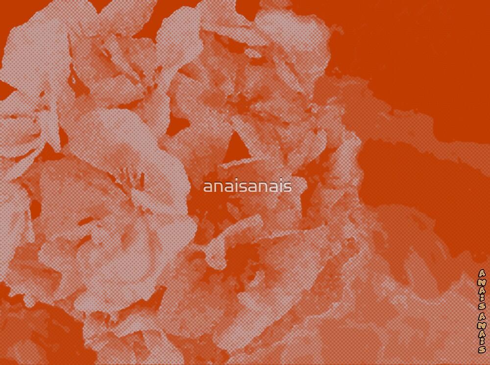 Abstract Pelargonium by anaisanais