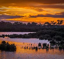 Tooradin Inlet. by Bette Devine