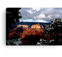 Earth Day.....  Canvas Print