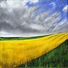 Yellow Field by Ben Durrant