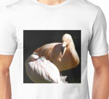Chilean and Lesser Flamingos Unisex T-Shirt