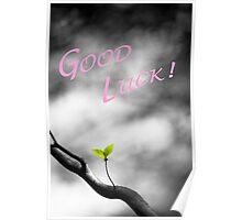 Good Luck Leaves Poster