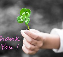 Four-Leaved Clover in a Child Hand - Thank You by 75tiks