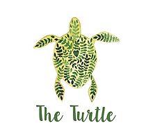 Patterned floral watercolor turtle illustration by julkapulka