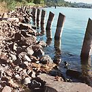 Coulon shoreline by Mike Cressy