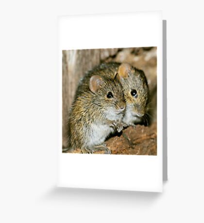 DOUBLE TWO Greeting Card