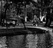 Curitiba by IsabelleC