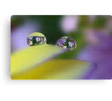 Spring flower drops Canvas Print