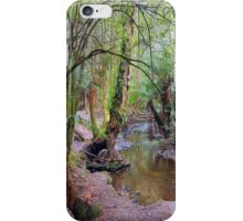 Nature's pallete, Mt Field National Park, simply stunning iPhone Case/Skin
