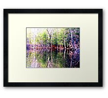 Mirror Land Framed Print