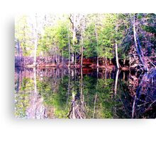 Mirror Land Canvas Print